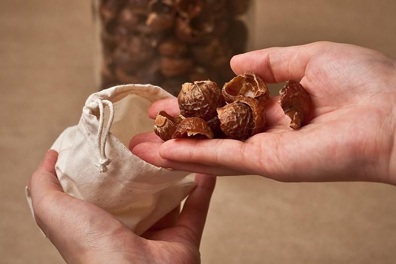 Где купить мыльные орехи