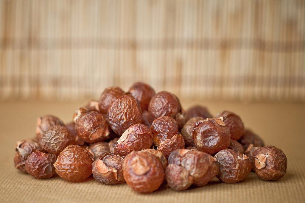 Состав и польза мыльных орехов