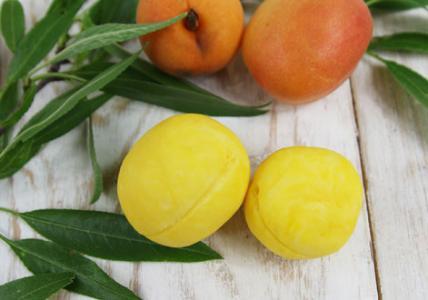 Мыльные «абрикосы» для тела