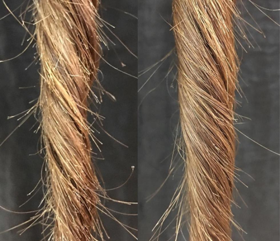 кунжутное масло для волос при секущихся кончиках